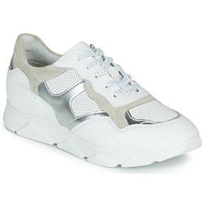 Xαμηλά Sneakers André HAVILAH ΣΤΕΛΕΧΟΣ: Δέρμα & ΕΠΕΝΔΥΣΗ: Ύφασμα & ΕΣ. ΣΟΛΑ: Συνθετικό & ΕΞ. ΣΟΛΑ: Καουτσούκ