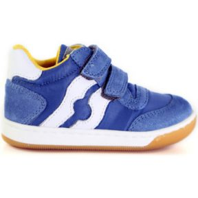 Xαμηλά Sneakers Falcotto 2014156 01