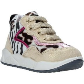 Sneakers Falcotto 2015423 02