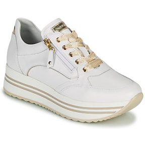 Xαμηλά Sneakers NeroGiardini DAKOTA ΣΤΕΛΕΧΟΣ: Δέρμα & ΕΠΕΝΔΥΣΗ: Δέρμα & ΕΣ. ΣΟΛΑ: Δέρμα & ΕΞ. ΣΟΛΑ: Συνθετικό