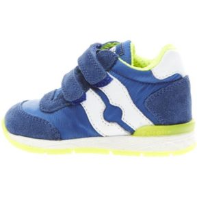 Sneakers Falcotto 2012380 01