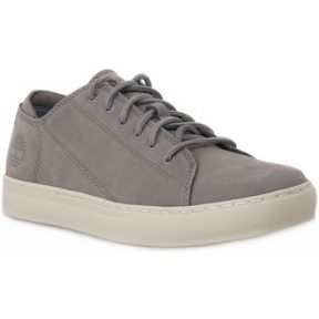 Xαμηλά Sneakers Timberland ADVENTURE CUP MODERN
