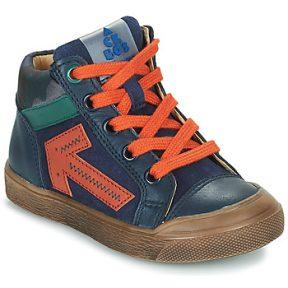 Ψηλά Sneakers Acebo's 5567-MARINO-I ΣΤΕΛΕΧΟΣ: Δέρμα & ΕΠΕΝΔΥΣΗ: Δέρμα & ΕΣ. ΣΟΛΑ: Δέρμα & ΕΞ. ΣΟΛΑ: Καουτσούκ