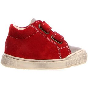 Xαμηλά Sneakers Falcotto 2014602 01