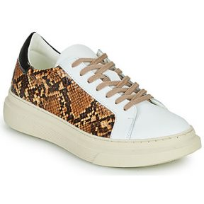 Xαμηλά Sneakers Betty London PAROLE ΣΤΕΛΕΧΟΣ: Δέρμα και συνθετικό & ΕΠΕΝΔΥΣΗ: Συνθετικό & ΕΣ. ΣΟΛΑ: Συνθετικό & ΕΞ. ΣΟΛΑ: Καουτσούκ