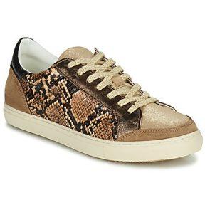 Xαμηλά Sneakers Betty London PERMINA ΣΤΕΛΕΧΟΣ: Δέρμα και συνθετικό & ΕΠΕΝΔΥΣΗ: Συνθετικό & ΕΣ. ΣΟΛΑ: Συνθετικό & ΕΞ. ΣΟΛΑ: Καουτσούκ