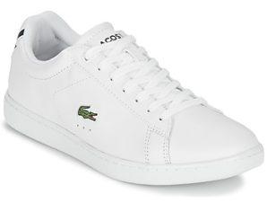 Xαμηλά Sneakers Lacoste CARNABY EVO BL 1 ΣΤΕΛΕΧΟΣ: Δέρμα & ΕΠΕΝΔΥΣΗ: Ύφασμα & ΕΣ. ΣΟΛΑ: Ύφασμα & ΕΞ. ΣΟΛΑ: Καουτσούκ