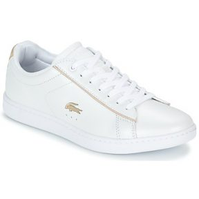 Xαμηλά Sneakers Lacoste CARNABY EVO 118 6 ΣΤΕΛΕΧΟΣ: Δέρμα / ύφασμα & ΕΠΕΝΔΥΣΗ: Ύφασμα & ΕΣ. ΣΟΛΑ: Ύφασμα & ΕΞ. ΣΟΛΑ: Καουτσούκ