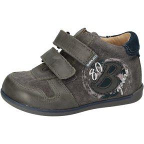 Ψηλά Sneakers Balducci sneakers grigio camoscio pelle AD587